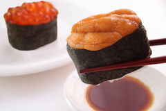 Sushi, zeeëgel en zalmkuiten Stock Fotografie