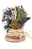 susi bukietów ziele Fotografia Royalty Free