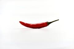 Susi chili pieprze Odizolowywający Obraz Royalty Free