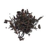 Susi czarni herbaciani liście na bielu Obraz Stock
