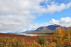 Susitna河和山沿Denali Hwy,阿拉斯加 免版税图库摄影