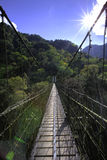 Suspended bridge Royalty Free Stock Images