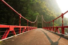 Suspended bridge. Red suspended brigde in a green mountain stock photography