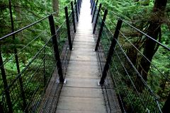 Suspended bridge. At capilano, vancouver,bc Royalty Free Stock Photos