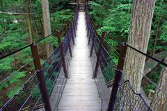 Suspended bridge Royalty Free Stock Photos