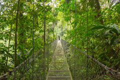 Suspended bridge, Costa Rica Royalty Free Stock Photography