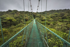Suspended bridge in Costa Rica. High suspended bridge over the cloud-forest from Costa Rica Stock Photography