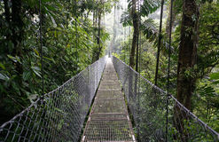 Suspended Bridge at La Fortuna Royalty Free Stock Image