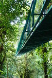 Suspended bridge, Monteverde, Costa Rica Royalty Free Stock Photos