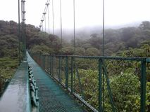 Suspended bridge in Monteverde, Costa Rica. A big suspended bridge over the wild cloudy forest in Monteverde, Costa Rica stock photo