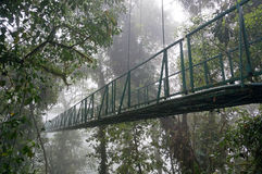 Suspended Bridge at Monteverde Royalty Free Stock Images