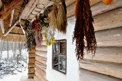 Suspended bunches of dried herbs at porch of an old wooden cottage Stock Photo
