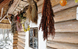Suspended bunches of dried herbs at porch of an old wooden cottage Royalty Free Stock Photos