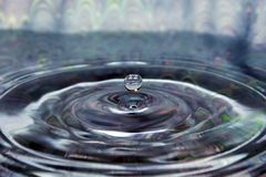 Suspended Water Droplet. A close-up/macro of a suspended water droplet royalty free stock images