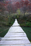 Suspended wire bridge Royalty Free Stock Photos