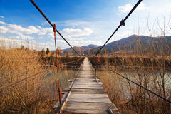 Suspended wooden bridge Stock Images