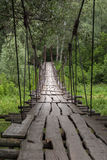 A suspended wooden bridge in green summer forest. Large cracks in the old boards and rusted cables of the suspension Royalty Free Stock Images