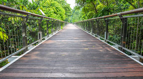 Suspended wooden bridge illuminated by light Stock Images
