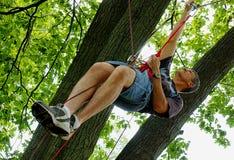 Suspendido de cuerdas en un árbol Foto de archivo libre de regalías