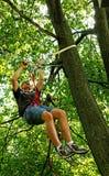 Suspendido de cuerdas en un árbol Fotografía de archivo