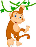 Suspensão bonito dos desenhos animados do macaco Fotos de Stock