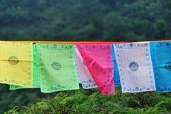 Suspensão colorida das bandeiras da oração Imagens de Stock