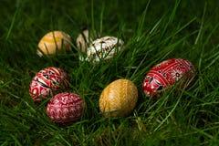 Suspensão colorida dos ovos Imagens de Stock Royalty Free