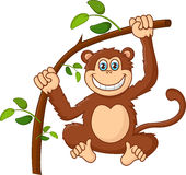 Suspensão feliz do macaco do sorriso dos desenhos animados Fotografia de Stock Royalty Free