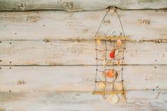 Suspensión de las cáscaras del mar en fondo de madera El diseñar del vintage Imagenes de archivo