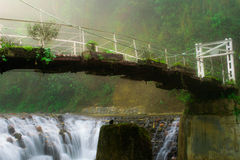 Suspension bride across the river in the tropical forest Royalty Free Stock Photography