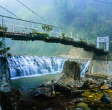 Suspension bride across the river in the tropical forest Stock Photography
