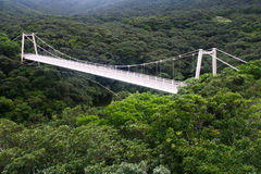 Suspension bridge. Against a forest backdrop, in Ishigaki, Japan Royalty Free Stock Photos