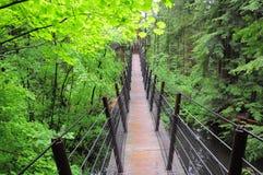 Suspension bridge. Royalty Free Stock Photos