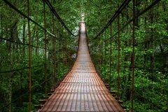 Free Suspension Bridge Stock Images - 47175114