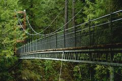 Suspension bridge. At Drift creek falls, Oregon stock images