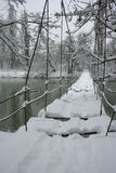 The Suspension bridge. The Suspension bridge on river is fallen asleep by snow Royalty Free Stock Photos