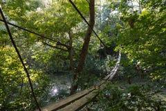 Suspension bridge across the river Royalty Free Stock Photo
