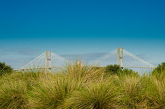 Suspension Bridge Behind Sea Grasses. A large suspension bridge connects islets with the mainland in the southern United States royalty free stock photo