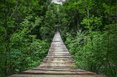 Suspension bridge, blurred background Stock Photo