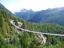 Suspension bridge Canada nature royalty free stock photo