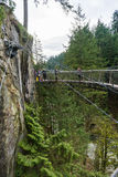 A suspension bridge at the Capilano Suspension Bridge Park Stock Photo