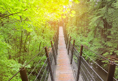 Suspension bridge. Royalty Free Stock Photo
