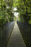 Suspension Bridge Royalty Free Stock Photography