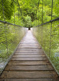 Suspension bridge in the forest Stock Photos