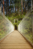 Suspension bridge in forest Royalty Free Stock Images