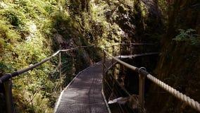 Suspension bridge at Gorges de la Fou, France stock video