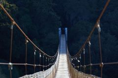 Suspension bridge with half shadow royalty free stock images