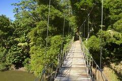 Suspension bridge in Honduras, Caribbean Stock Image