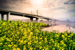 Suspension bridge landscape at sunset Royalty Free Stock Photo