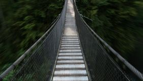 Suspension bridge leading to deep forest Royalty Free Stock Photos